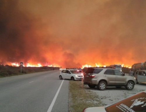 Garden Route fires predicted by experts